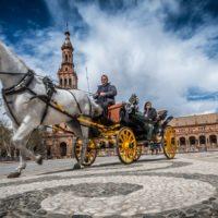 El 6º Congreso de EAVLD y 25º Simposio de Avedila se celebrarán en octubre de 2020 en Sevilla